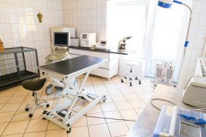 Vet-KoR - Centrum zdrowia małych zwierząt Częstochowa